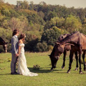 évi-és-dávid-gézaháza-esküvő-kreatív-fotózás-lovas-esküvő